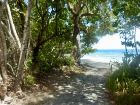 A Daintree Rainforest Road Trip with Get Up, Get Out There & Get Lost