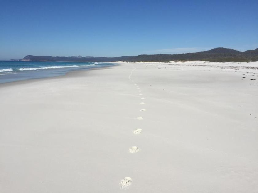 Karen Rose: A single running track across Friendly Beaches
