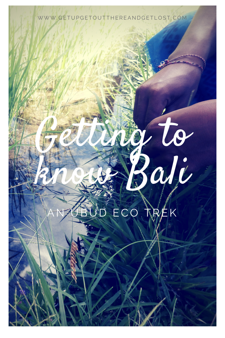Getting To Know Bali – An Ubud Eco Trek