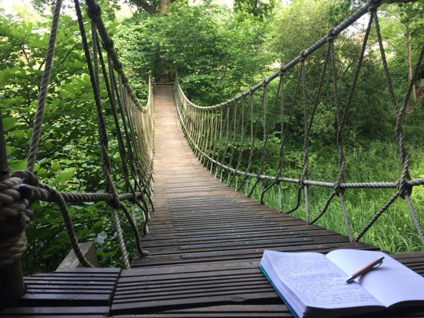 Bensfield Treehouse Rope Bridge Writing Backdrop