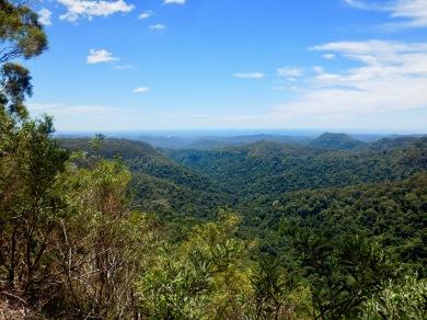 Springbrook National Park, NSW, Australia