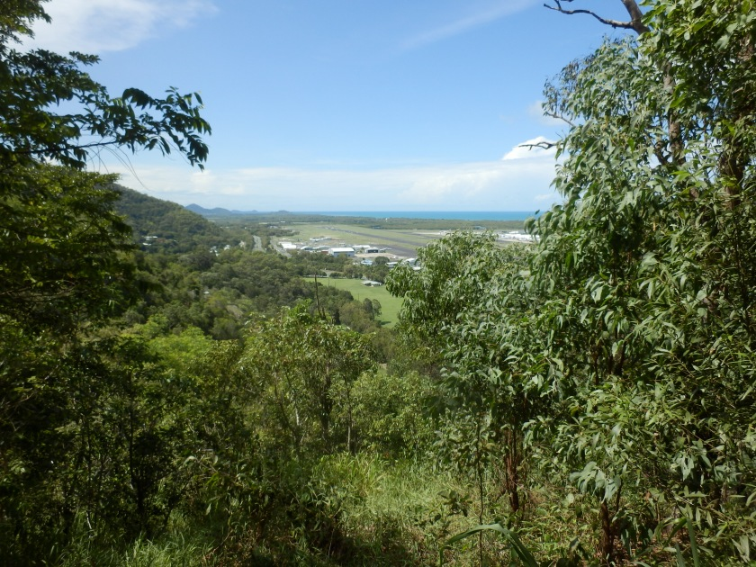 Views of Cairns, Red Route, Botanical Gardens
